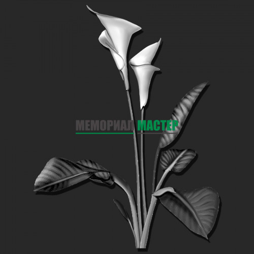 Цветы каллы ГР0066
