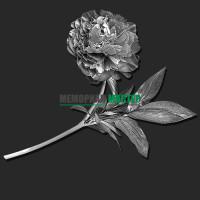 Цветок пион ГР0070