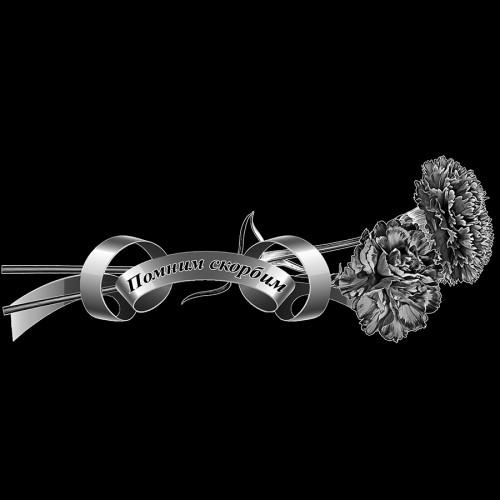 Цветы гвоздики с траурной лентой ГР0016