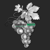 Гроздь винограда ГР0073