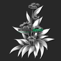 Цветы ГР0075