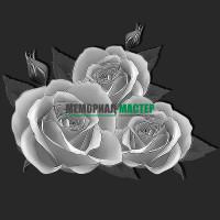 Цветы розы ГР0080
