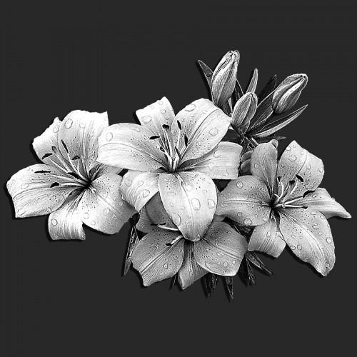 Цветы лилии ГР0083