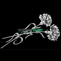 Цветы гвоздики ГР0011