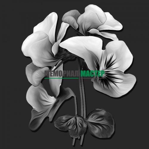 Цветы ГР0086