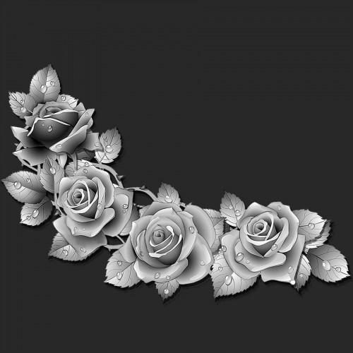 Цветы розы ГР0061
