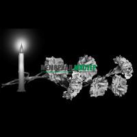 Цветы гвоздики со свечой ГР0017