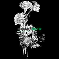 Цветы гвоздики ветерану ВОВ ГР0007